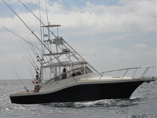 Picture of Deep Sea Charters Boat at Pipe Dream Charters