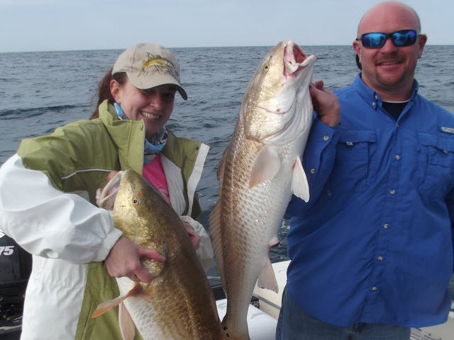 Winter nearshore fishing in January lands some really nice Bull Red Fish